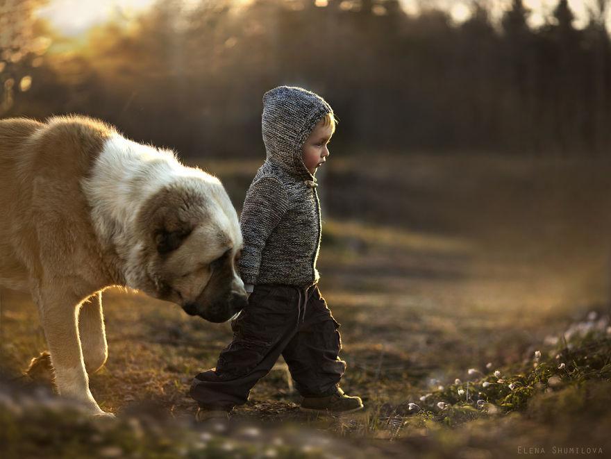 cool-animal-children-photography-Elena-Shumilova-sun-dog