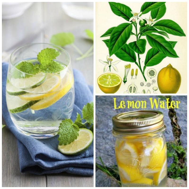 10 benefits for drinking lemon water Archives > Viva La Vida