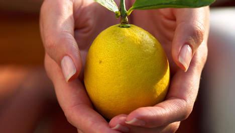 Wat kun je doen met een citroen?