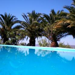 Zwembad yoga retreat open vanaf mei