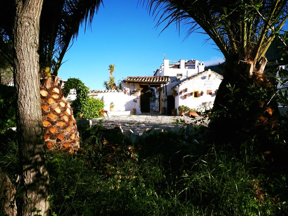 5 Day Yoga Retreat in Andalusia - Malaga - Spain
